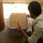 water-filters-local-05